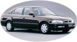 Domani 1997-2000 года